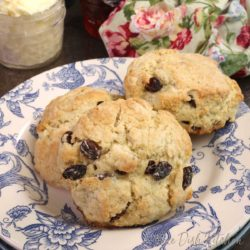 three raisin filled scones on a blue and white plate next to a floral napkin
